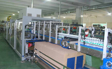 Automatic Case Packer(Wrap Around Carton Packer)